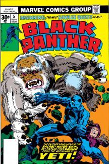 Black Panther (1976) #5