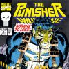The Punisher: War Zone (1992) #5