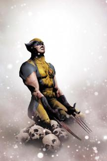 Wolverine (2010) #12