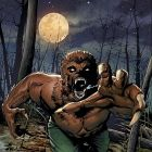 Wolverine By Night