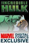 Incredible Hulk: The Fury Files (2008) #2