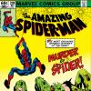Amazing Spider-Man (1963) #228 Cover