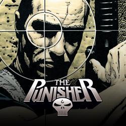 Punisher (2001 - 2003)