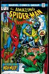 Amazing Spider-Man (1963) #124 Cover