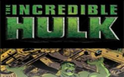 Incredible Hulk: The Fury Files (2008) #1