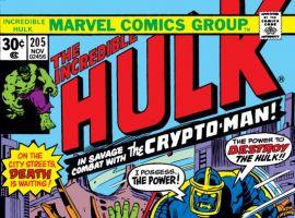 INCREDIBLE HULK (2009) #205 COVER