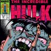 INCREDIBLE HULK #358 COVER
