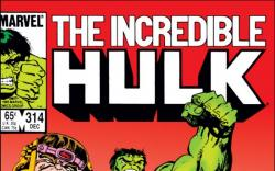 INCREDIBLE HULK (2009) #314 COVER