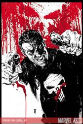 Punisher War Journal #17 