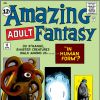 Amazing Adult Fantasy #11