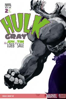 Hulk: Gray (2003) #2
