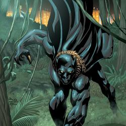 BLACK PANTHER 2099 (2004) #1 COVER