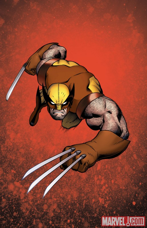Wolverine by Ed McGuinness