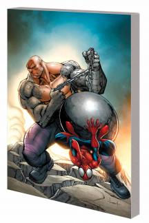 MARVEL UNIVERSE SPIDER-MAN: AMAZING FANTASY DIGEST (Digest)