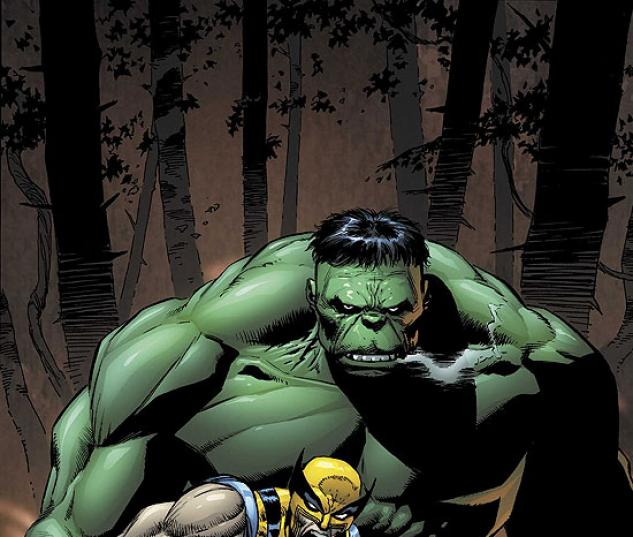 INCREDIBLE HULK (2007) #80 COVER