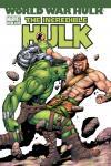 Incredible Hulk (1999) #107