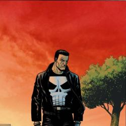 Punisher: Frank Castle Max (2009) #75 (DILLION VARIANT)