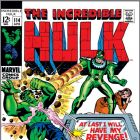 INCREDIBLE HULK (2009) #114 COVER