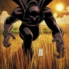 The Black Panther by John Romita Jr.