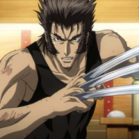 Looking back at the Wolverine Anime