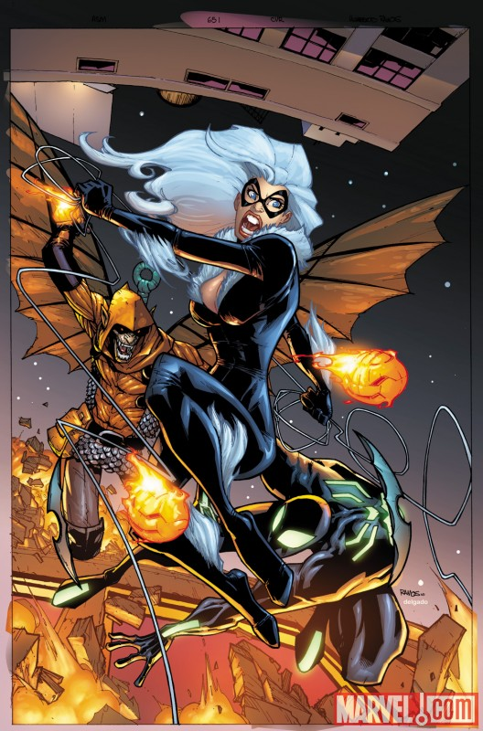 Image Featuring Black Cat
