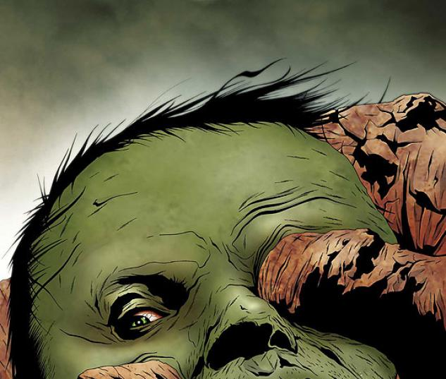 HULK & THING: HARD KNOCKS (2005) #4 COVER