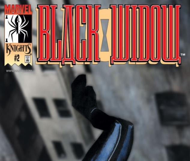 Black Widow: Breakdown (2001) #2