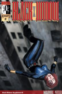 Black Widow: Breakdown (2001) #2