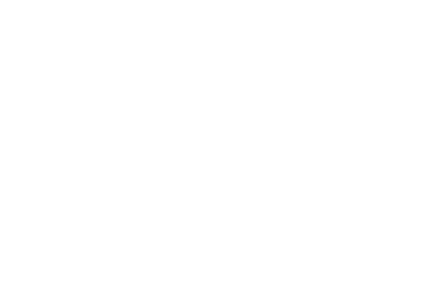Wolverine Detail
