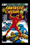 Fantastic Four (1961) #214 Cover