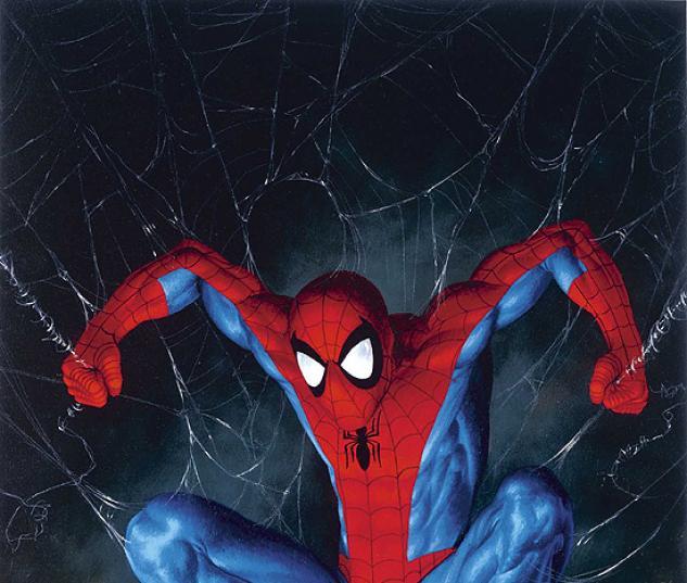 AMAZING SPIDER-MAN (2006) #518 COVER
