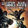 CAPTAIN AMERICA/BLACK PANTHER: FLAGS OF OUR FATHERS #4 cover by Denys Cowan