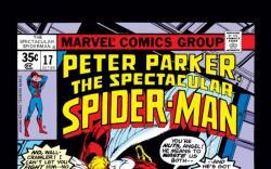 Peter Parker, The Spectacular Spider-Man #17
