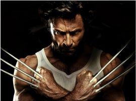 Hugh Jackman As Wolverine