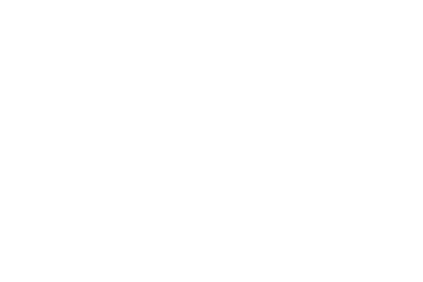 X-Force Trade Dress