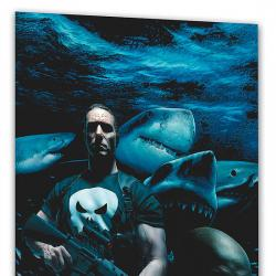 Punisher Max Vol. 6: Barracuda (2006)