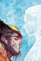Wolverine #317 