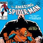 Amazing Spider-Man (1963) #249 Cover