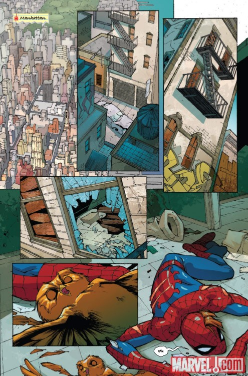 Marvel Adventures Spider-Man #5 preview art by Roberto Di Salvo