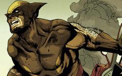 First Look: Wolverine #12