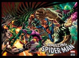 Amazing Spider-Man (1999) #645, Spidey Vs. Variant
