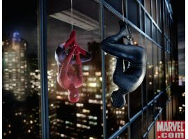 Reflecion of black and red Spidey
