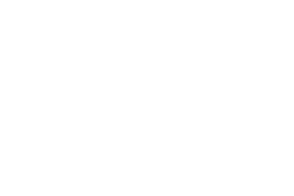 Punisher War Journal Trade Dress