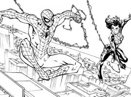 Spider-Man/Silk by Todd Nauck