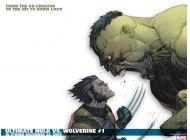 Ultimate Wolverine Vs. Hulk (2005) #1 Wallpaper