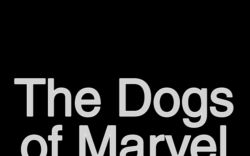 Marvel AR: The Dogs of Marvel