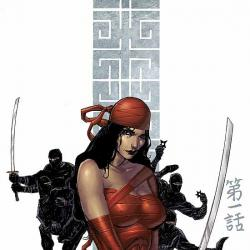 ELEKTRA: THE HAND (2004) #1 COVER