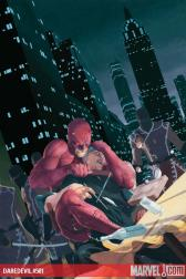 Daredevil #501 