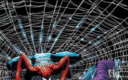 AMAZING SPIDER-MAN (2004) #503 COVER