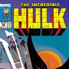 INCREDIBLE HULK (2009) #340 COVER